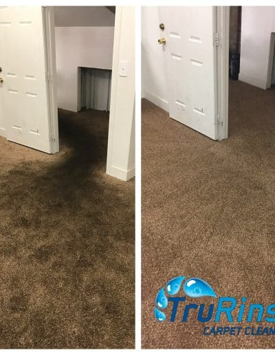 TruRinse Orem Utah Carpet Cleaning