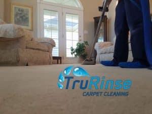 Professional Carpet Cleaner - TruRinse