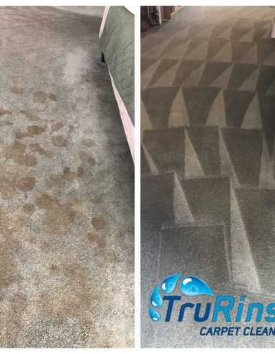 TruRinse Carpet Cleaning - Before & After pictures of professional pet stain removal