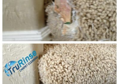 TruRinse-carpet-repair