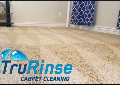 TruRinse Carpet Cleaning