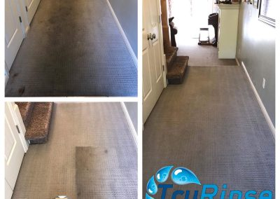 TruRinse Carpet Cleaning - Before, During & After cleaning hall carpet