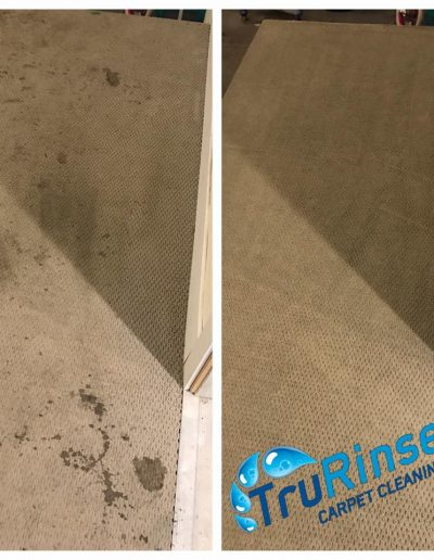 TruRinse Carpet Cleaning - Before and After cleaning carpet in entryway