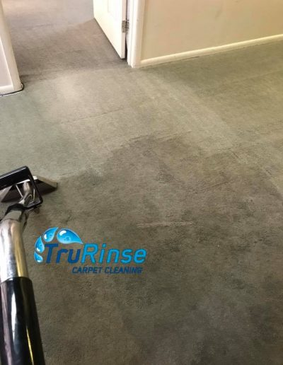 TruRinse Carpet Cleaning - Bringing the green back out of this customers carpet