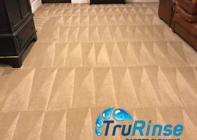 TruRinse Carpet Cleaning - Finished job