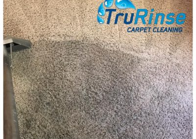 TruRinse Carpet Cleaning - Getting the dirt from this carpets traffic lane