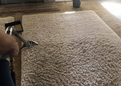 TruRinse Carpet Cleaning - In the middle of cleaning white rug