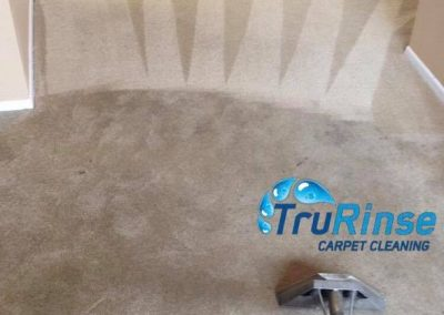 TruRinse Carpet Cleaning - Showing the difference between clean and dirty carpet