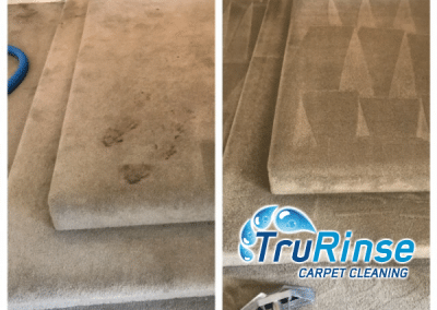 Before and after cleaning chocolate : throw up out of carpet - TruRinse