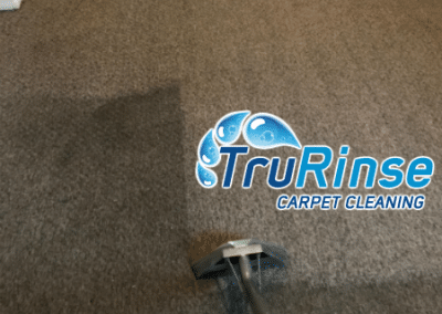 Pulling lots of dirt from customers carpet here - TruRinse