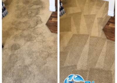 TruRinse - Cleaning carpet in customers entry way