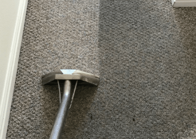Traffic lane on carpet being cleaned by TruRinse