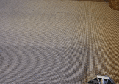 Commercial carpet cleaning by TruRinse