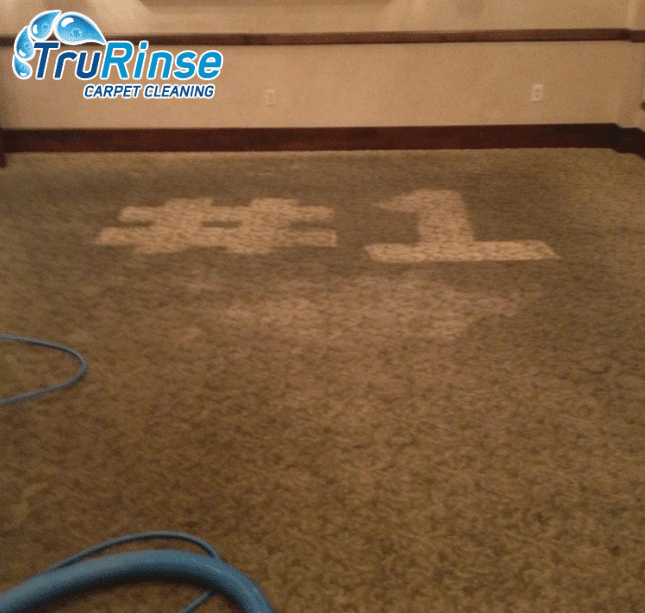 Commercial carpet cleaner services by TruRinse