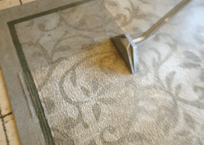 Area rug cleaning by TruRinse