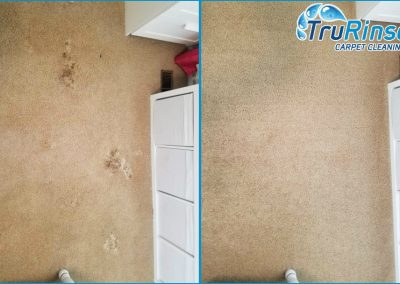 Before and after cleaning pet mess from customers carpet - TruRinse