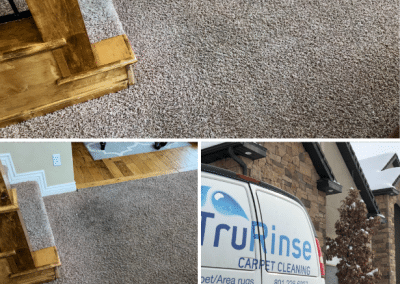 TruRinse - The carpet professionals