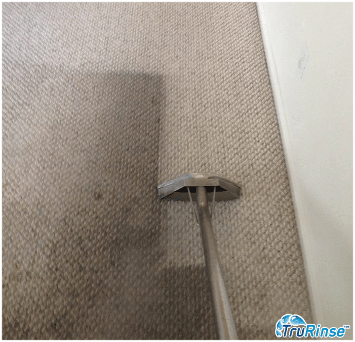 TruRinse cleaning traffic lane - carpet professionals