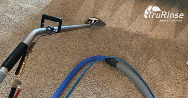 5 Reasons to Use Steam Cleaning Carpet Cleaners