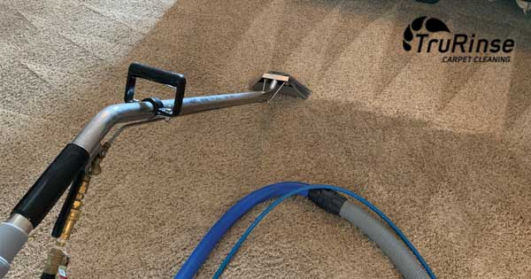 4 Ways to Clean Your Carpet & Why Steam Cleaning Your Carpets is Better