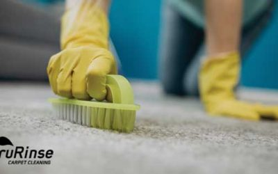 6 Common DIY Carpet Cleaning Mistakes That Damage Your Carpet