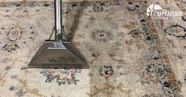 Why Hire a Professional Oriental Rug Cleaner?