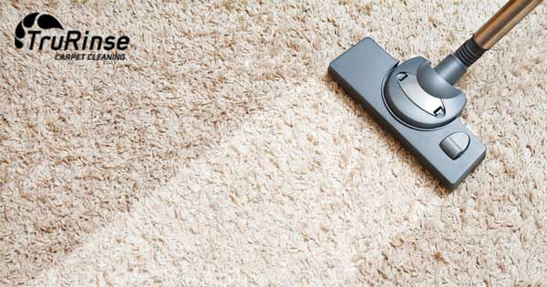 7 Factors to Consider When Hiring a Commercial Carpet Cleaning Company