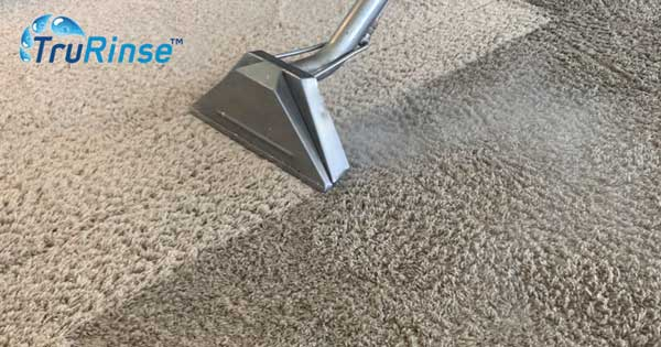 The Science Behind Carpet Cleaning is Truly Powerful