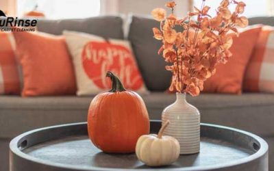 What to Do to Help You Keep Your Home Clean this Fall?